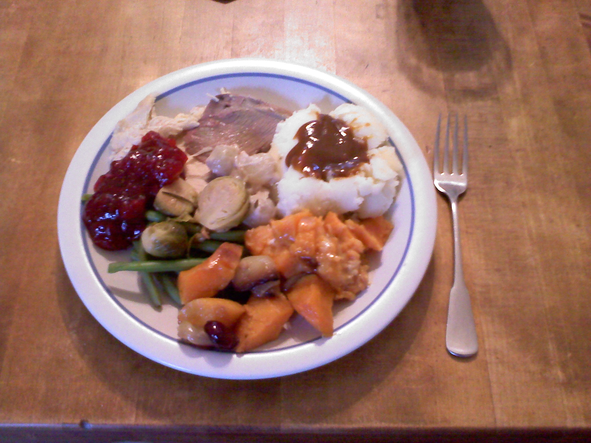 Cambridge, MA, The Nelson House :: 2nd Thanksgiving Dinner (Friday afternoon), great food, great company.