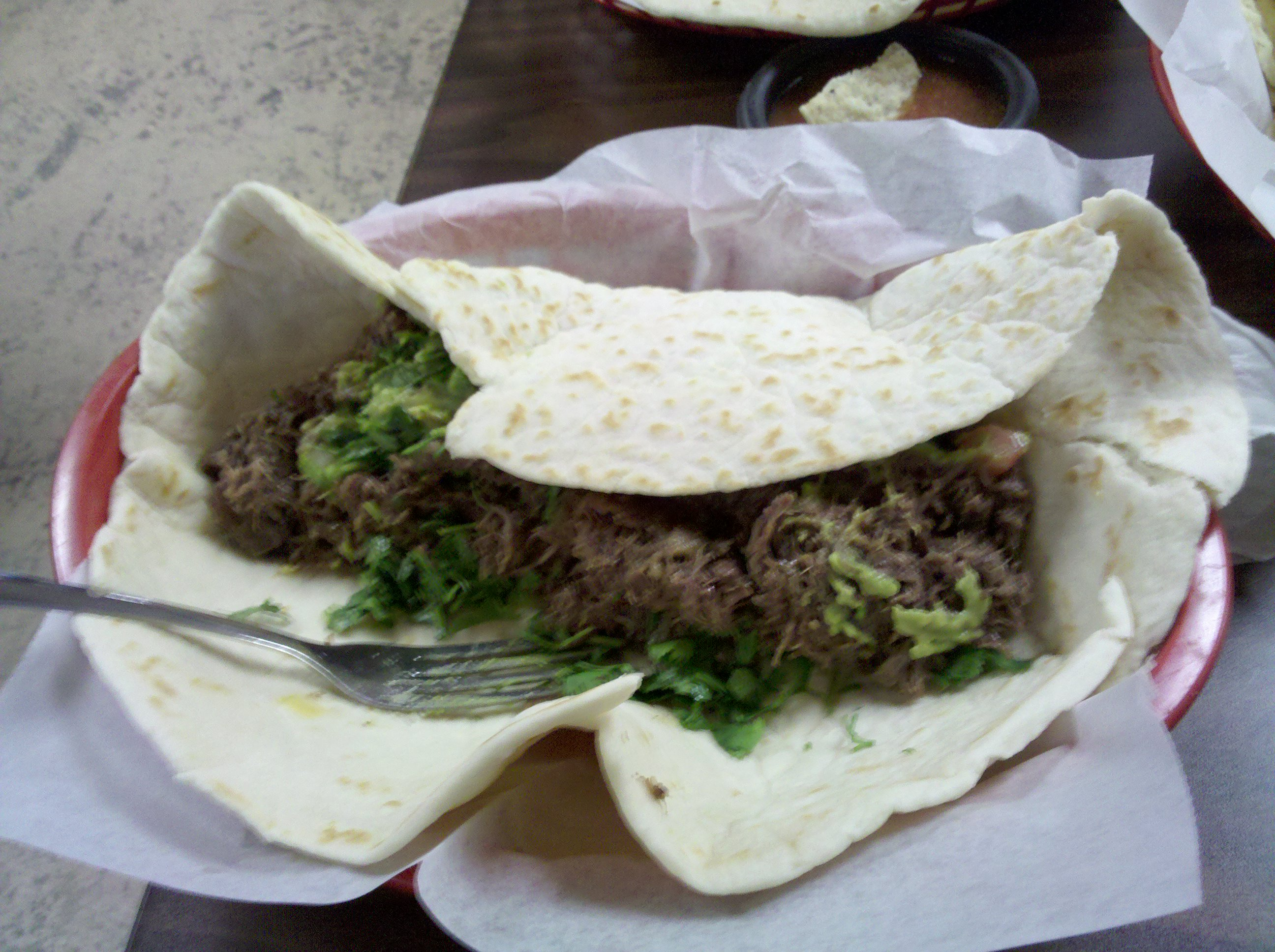 Los Gallo's NEW BRAUNFELS TX :: Oh Boy The Biggest Barbacoa taco. this Taco was 13 in and had pound1/2 of Barbacoa Yum