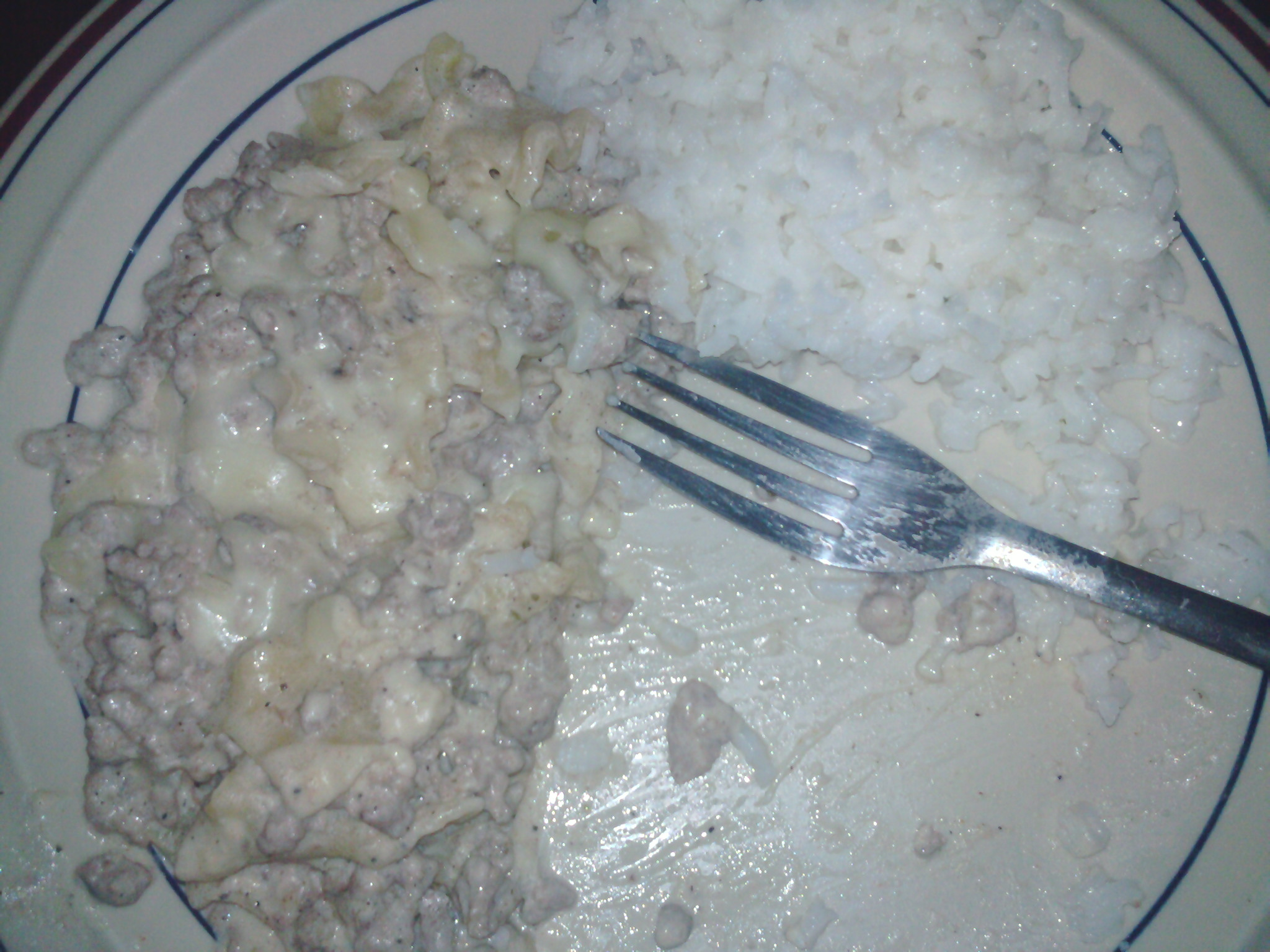 sunny san diego :: homemade turkey stroganoff with a side of garlic and parsley white rice, looks gross but it was damn good