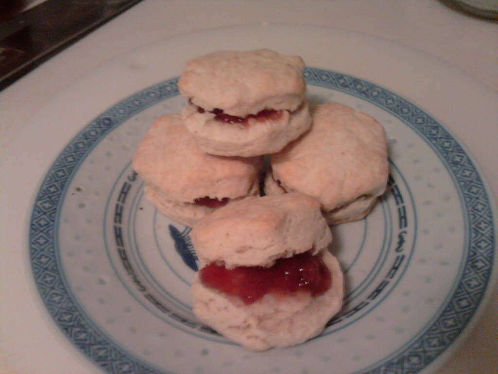 eastern ct :: gloomy weather here in ct. what better way to enjoy it with baking powder buscuits and strawberry jam fresh out of the oven
