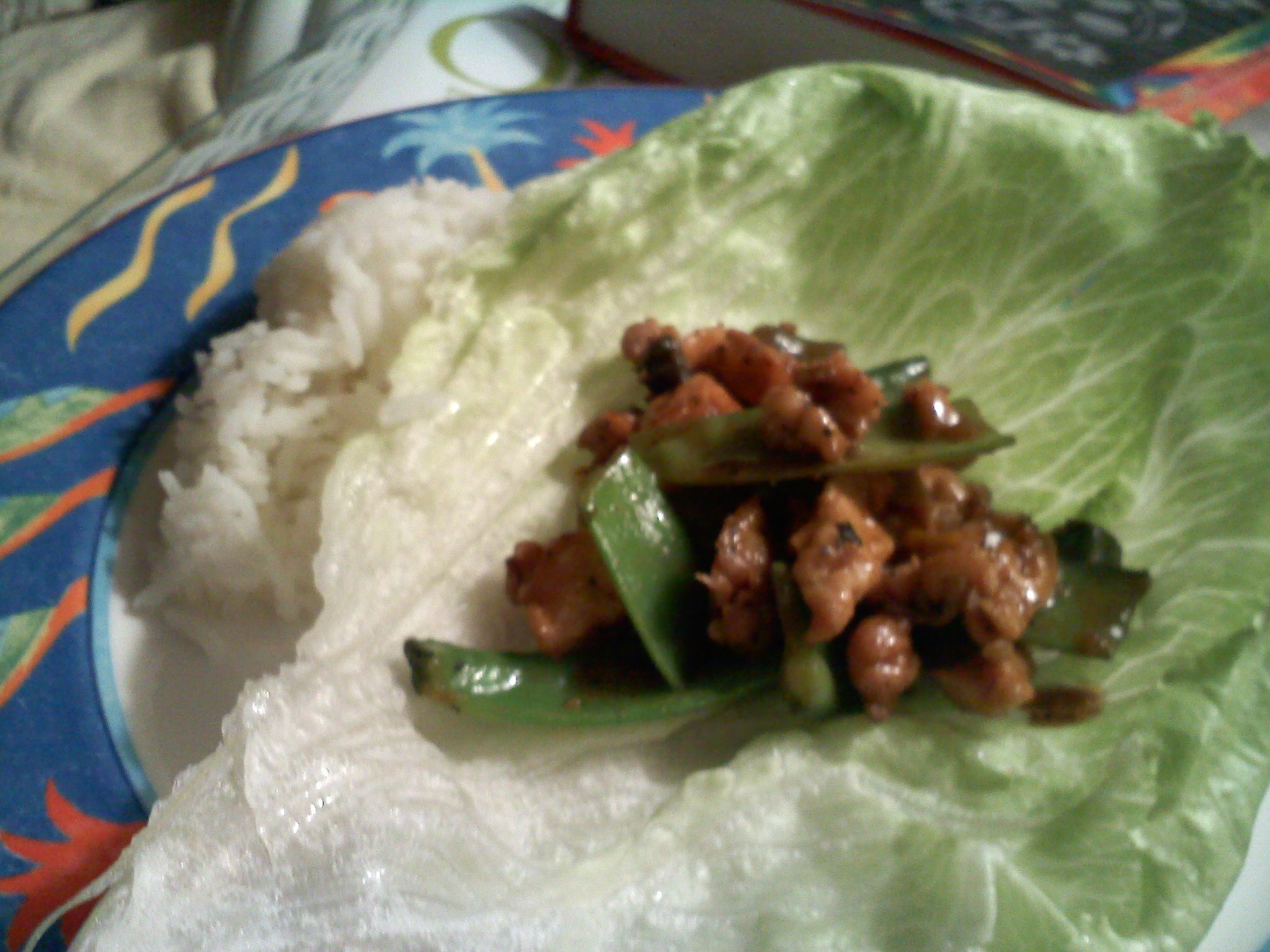 USA :: chicken and snow pees raped in lettece with rice on the side!!!! YUM!!!!
