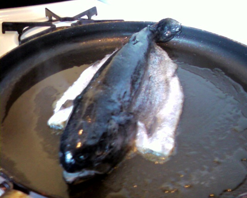 my kitchen :: Pan-fried Trout. quick and easy. whenever possible, i like my lunch to look at me while i cook it. does that make me strange?