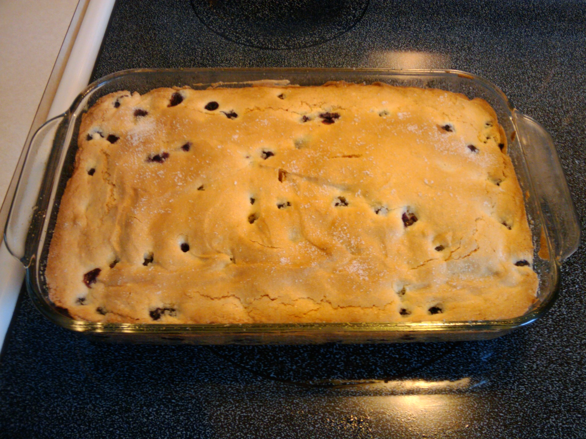 Orlando,FL :: Home-made blueberry cake made from a New England recipe.