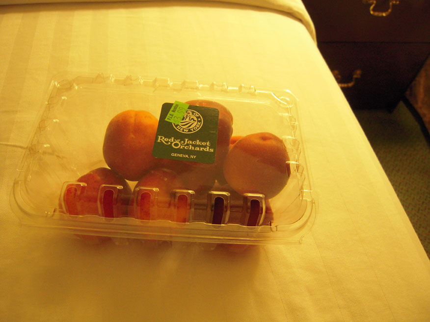 Willow Grove, PA :: fresh apricots are different than the dried ones... the fresh ones have a pitt in them!!!