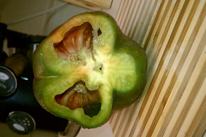 ALLENTOWN,PA :: green bell pepper looking like a skull