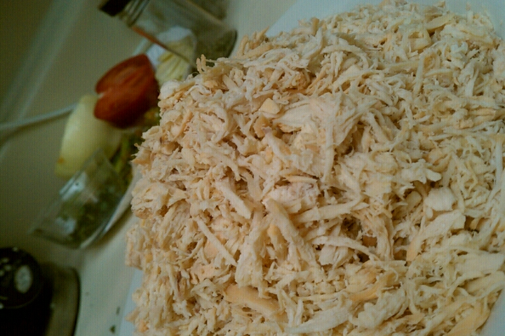 ALLENTOWN,PA :: shredded chicken breast