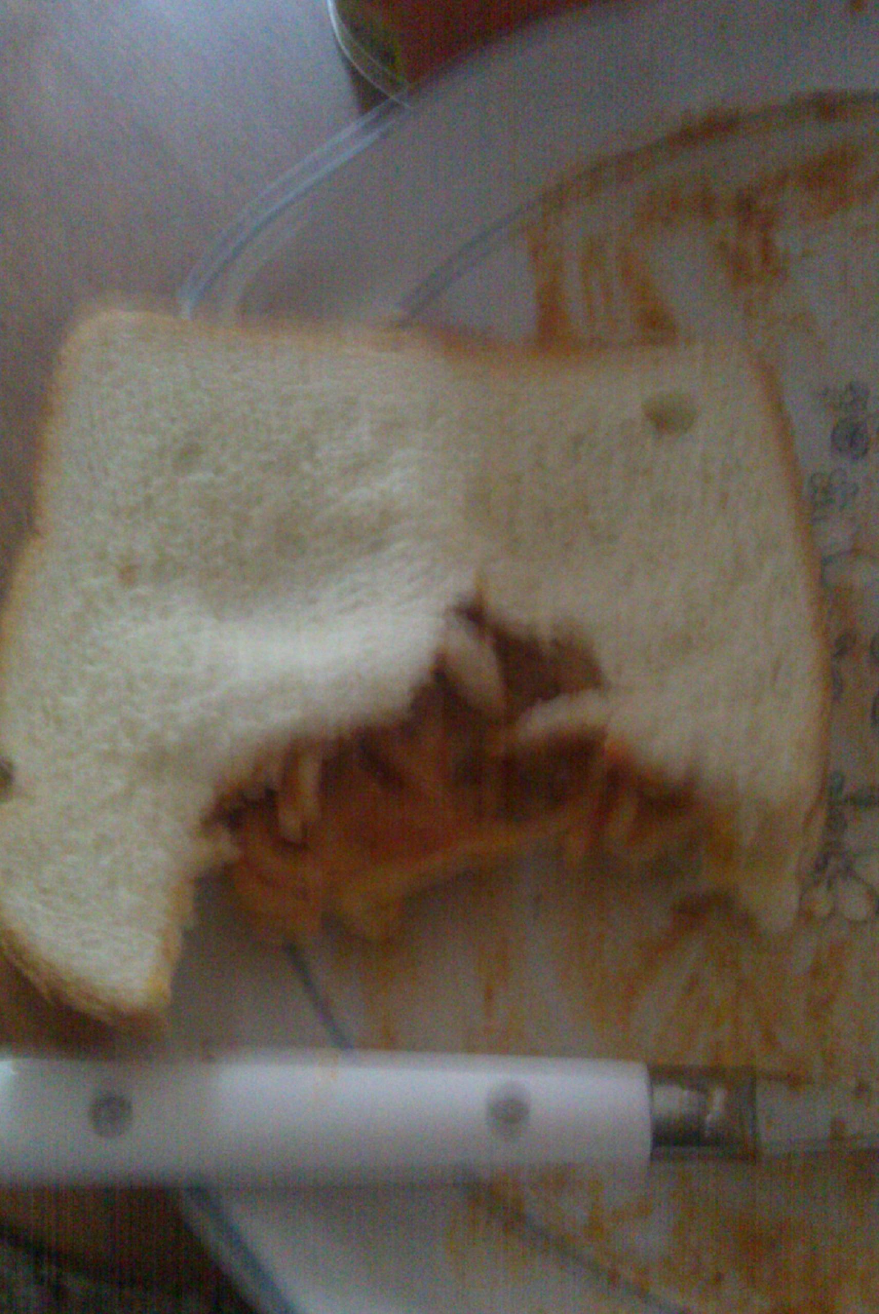 bakersfield ca :: spaghett sandwich