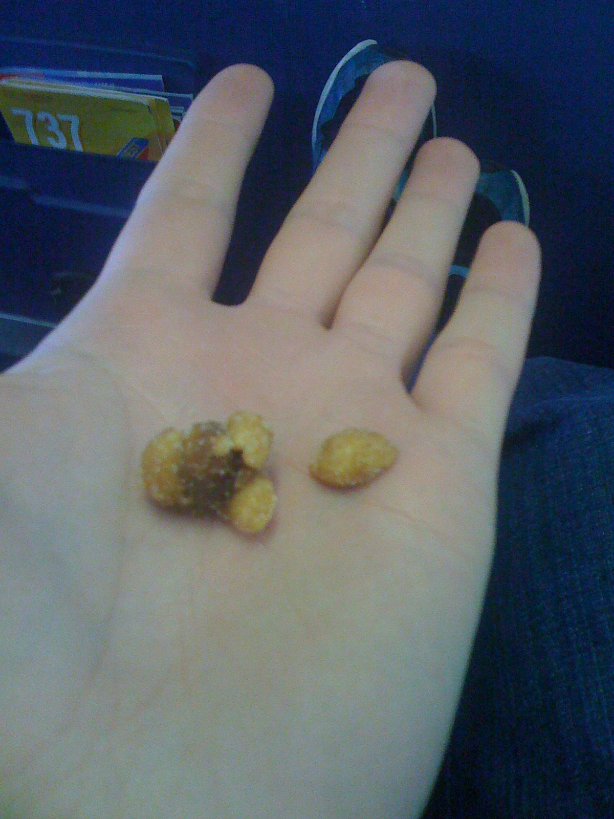 "southwest.com about 36,000 feet :: this is what I like to call a ""super honey roasted peanut"""