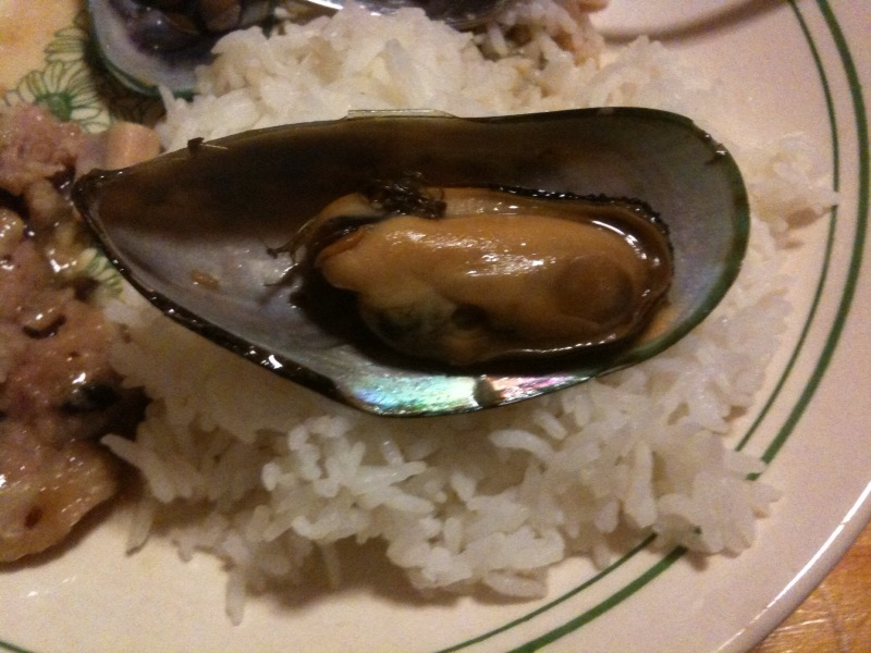 My House :: I hate to brag, but check out that mussel.